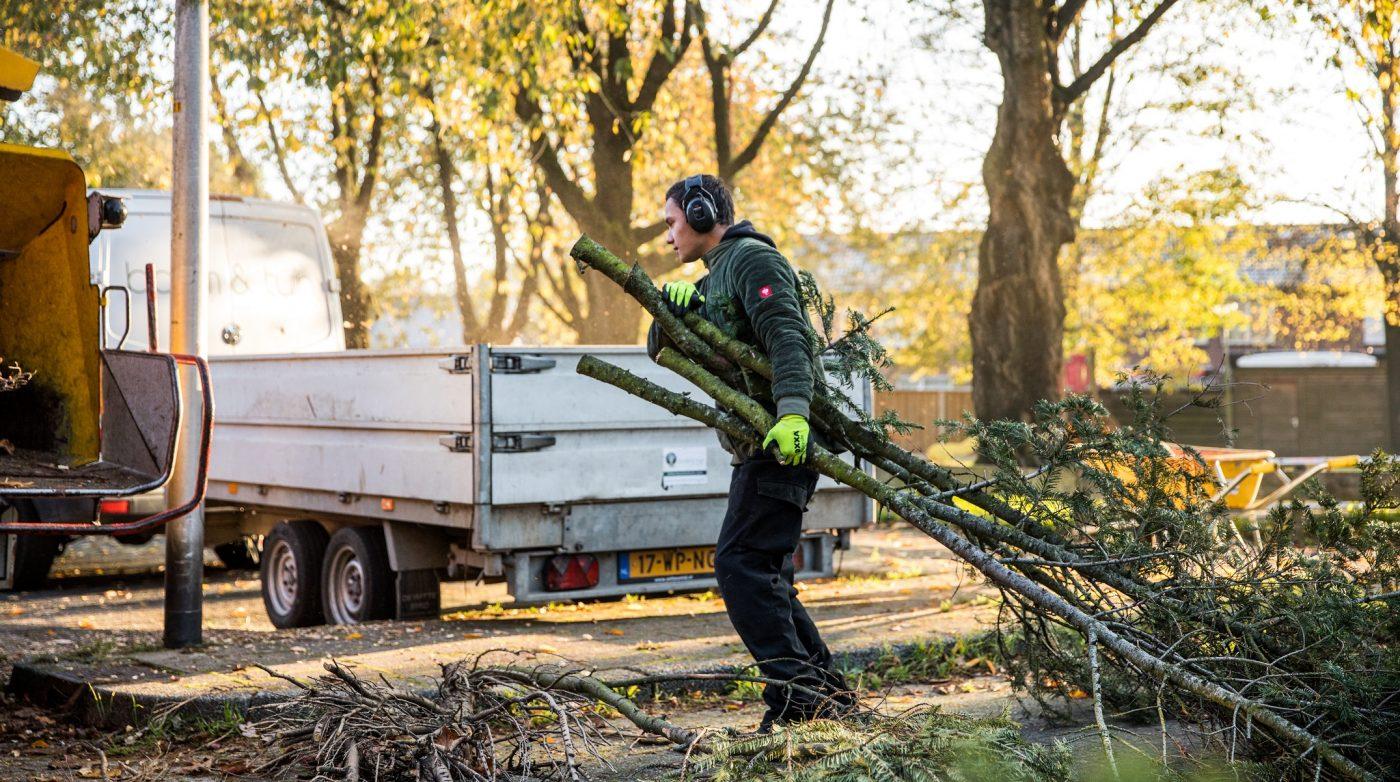Bomen verwijderen Hengelo Twente